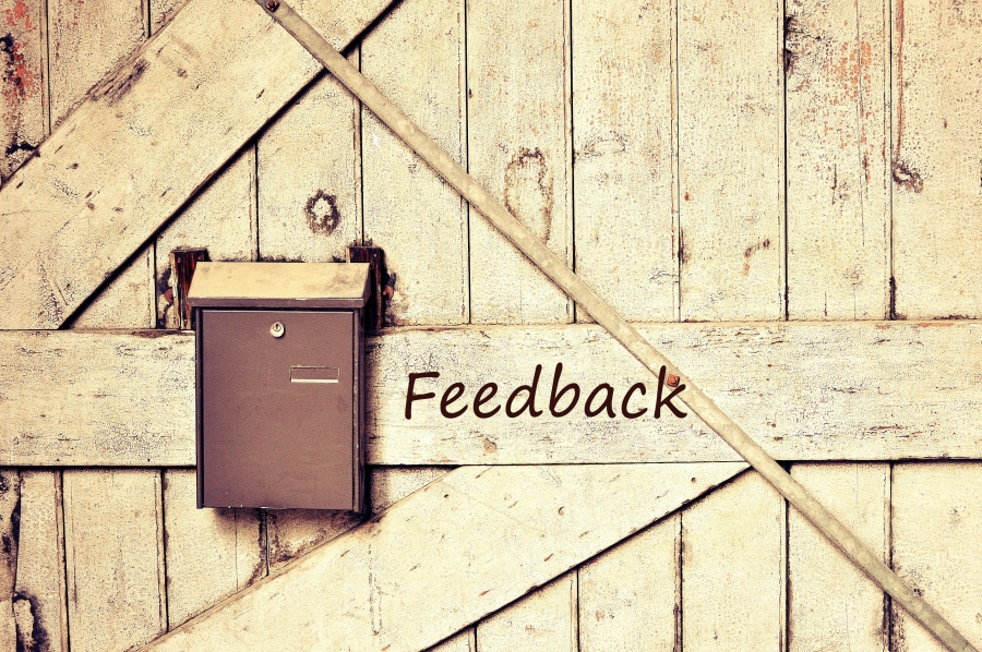 Why You Should Harness The Power Of Customer Feedback?