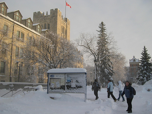 Why Canada's The Place To Be This Winter