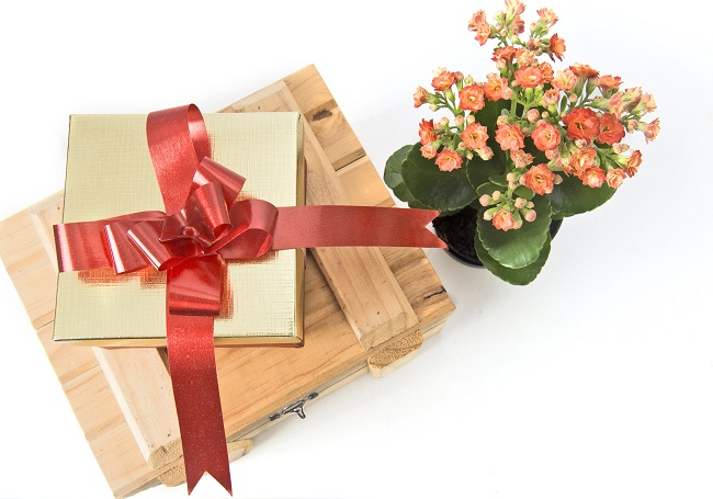 Facts For Why Should You Choose Online Flower Delivery