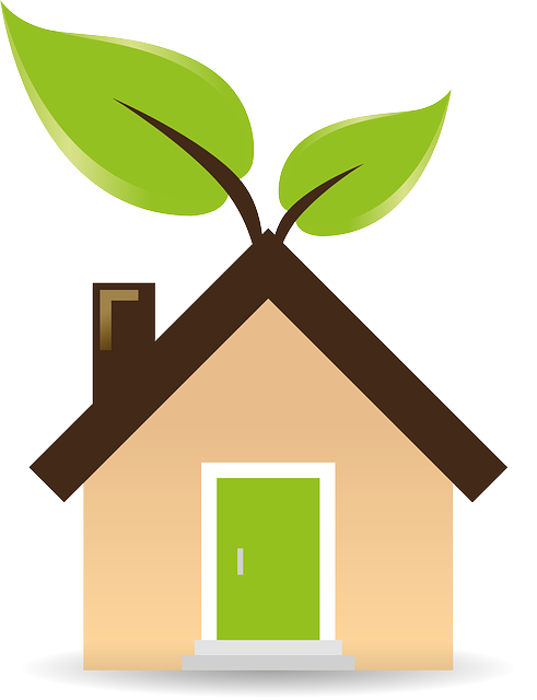 Small Changes That Make A Big Difference: Simple Ways To Make An Eco-Friendly Home