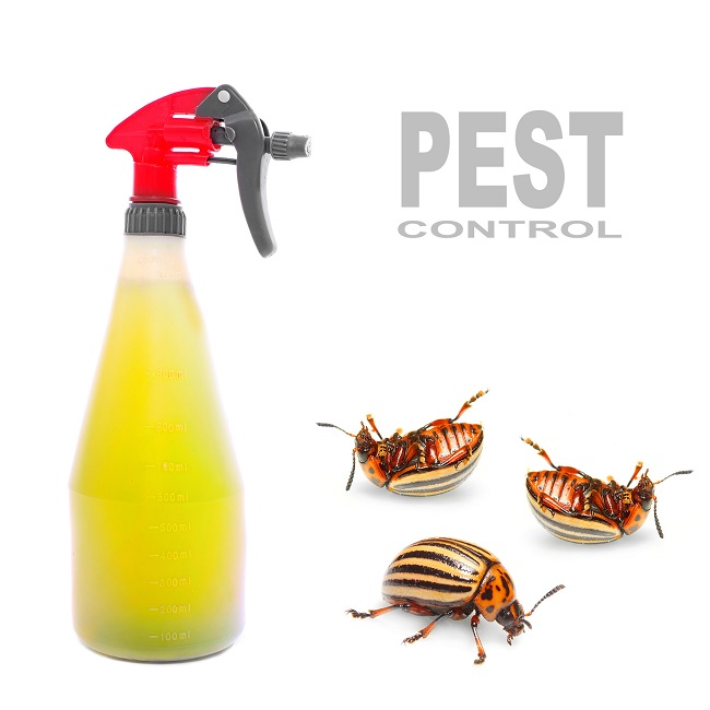 Pest Control Is A Great Help To Keep Your Home and Offices Clean