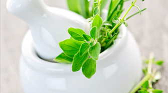 Learning The Advantages Of Aromatherapy