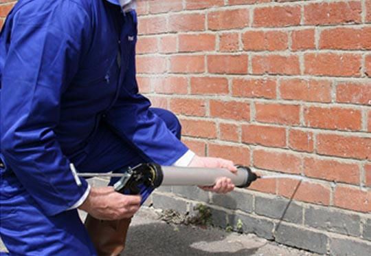 Are Damp Proofing Companies Really Helpful