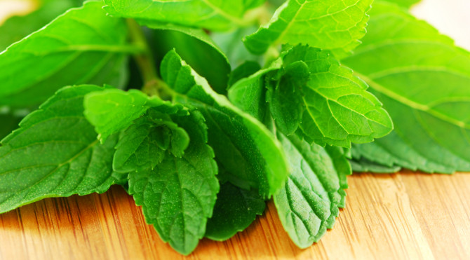 Benefits Of Eating Herbal Diet For Health