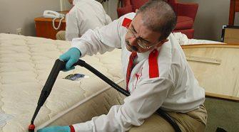 Hire An Expert Bed Bug Exterminator