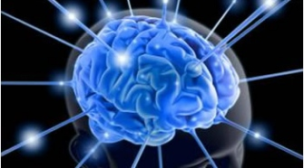 Taking Business More Strategically With Neurosense