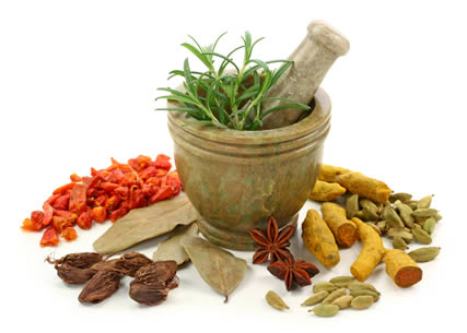 Herbal Medication To Relieve Pain