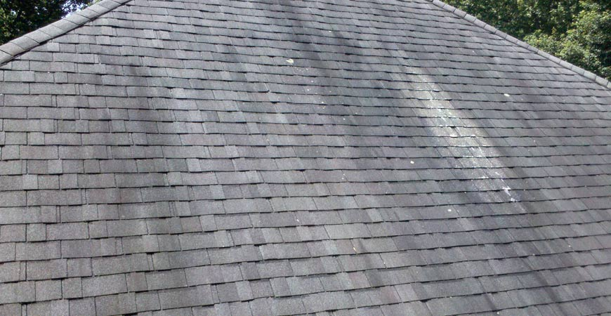 Have Clean Roof by Preventing The Formation Of Black and Red Algae