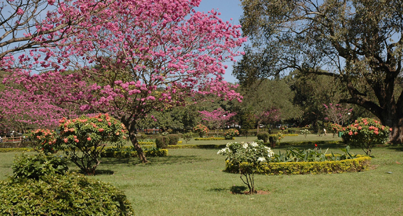 Take A Trip To The Capital Of Former Mysore State - Bangalore