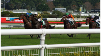 Betting On Horse Racing – An Introduction For Dummies