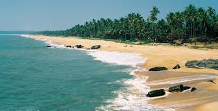Rake In The Old World Charm Of Cochin