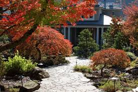 Landscaping Options Using Stone