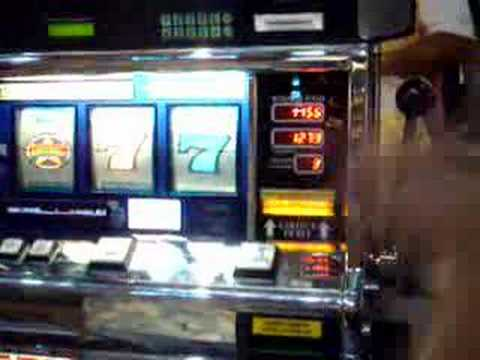 Play Slot Machines Online Plus Win