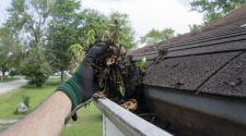 Top Reasons To Have Professionals Clean Your Gutters