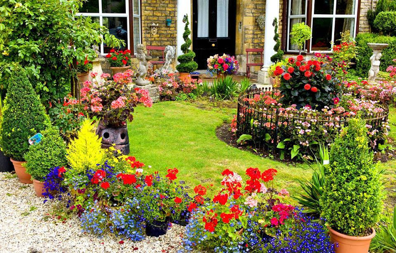 Advantages Of Gardening For Mental and Physical As Well As Environment Health