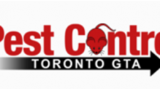 Efficient Professional Pest Control Service Toronto for Effective Pest Management