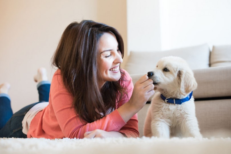 5 Ways In Which A Pet Can Improve Your Health