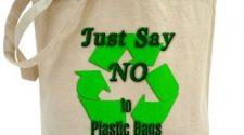 Reusable vs. Conventional Plastic Bag - Fiction & Fact Revealed