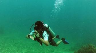 Goa underwater