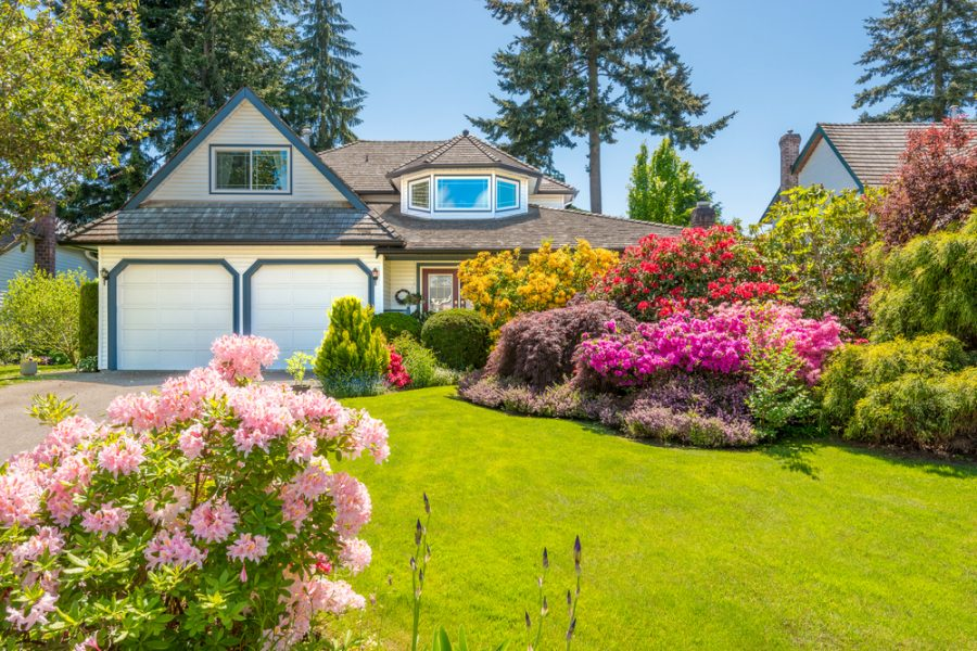 Get Ready HGTV, There's A New Designer In Town: How To Make Your Yard Pop