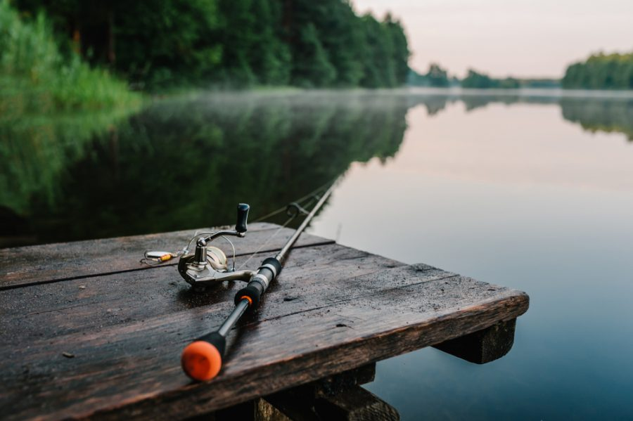 Top 13 Exquisite Tips For Fishing in Coorg
